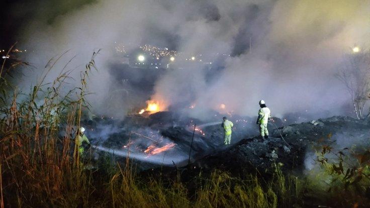 İzmir'de sazlık alanda yangın