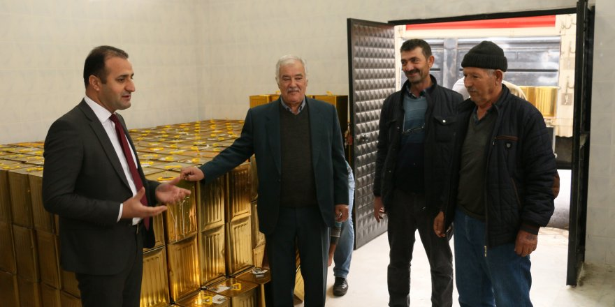 TORBALI'NIN BALI ARTIK ATATÜRK ORMAN ÇİFTLİĞİNDE