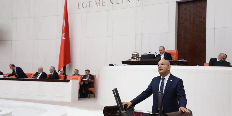 CHP'Lİ POLAT ÖDEMİŞ'TE KESİLEN 1000 ZEYTİN AĞACINI TBMM'YE TAŞIDI